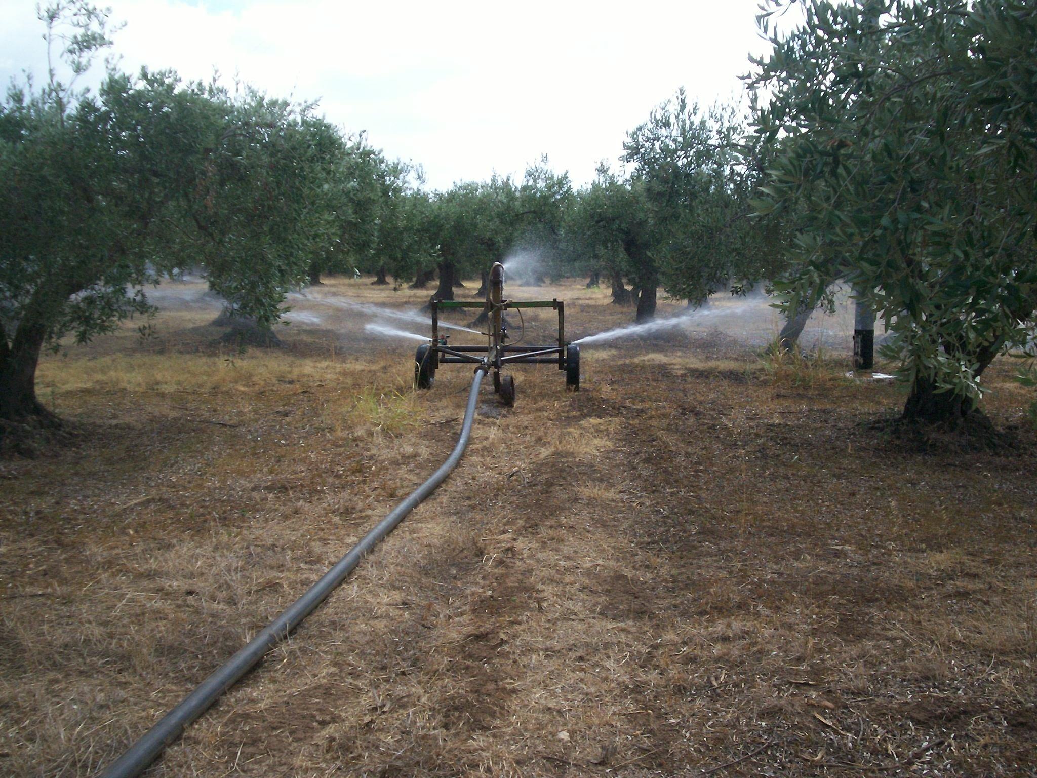 Aspersione irriwiki for Costo impianto irrigazione a pioggia